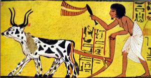 An Egyptian plow man.