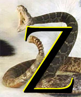 Letter Z superimposed on a striking rattler