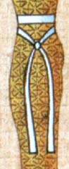 A midsection view of Isis wearing the 'genetic crossing' sash.